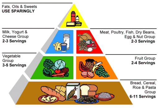 USFDA Food Pyramid