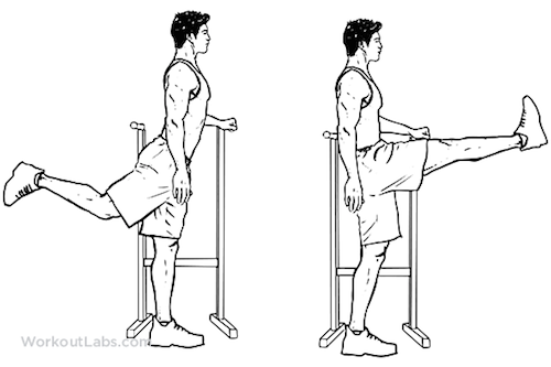 Dynamic Stretching Forward Leg Swings
